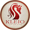 Kleio Arabians (Small)_1.png