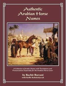 authentic arabian horse names the pyramid society