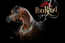 ibn_raad_with_new_logo.jpg