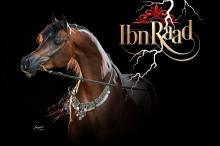 ibn_raad_with_new_logo.jpg