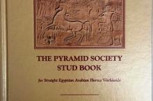 stud_book_cover_image.jpg