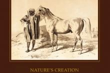 - the_arabian_horse_nagel